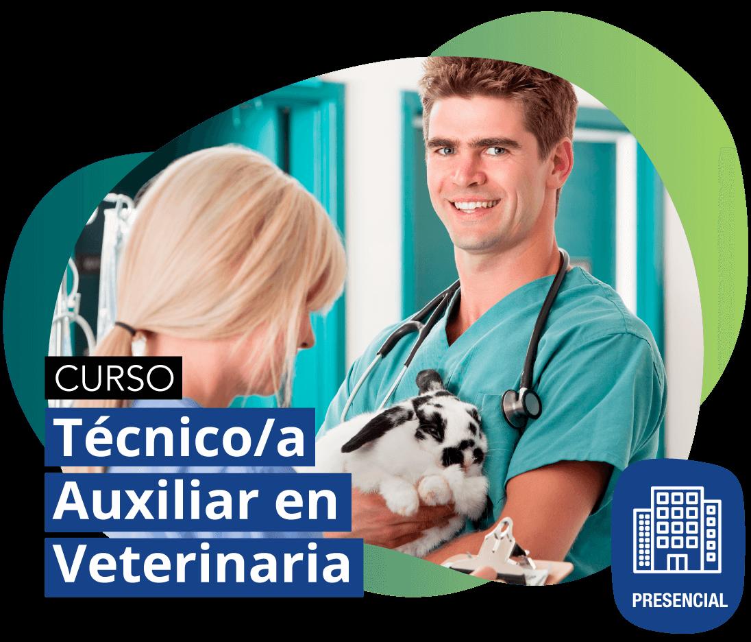 Curso Técnico/a Auxiliar en Veterinaria PRESENCIAL