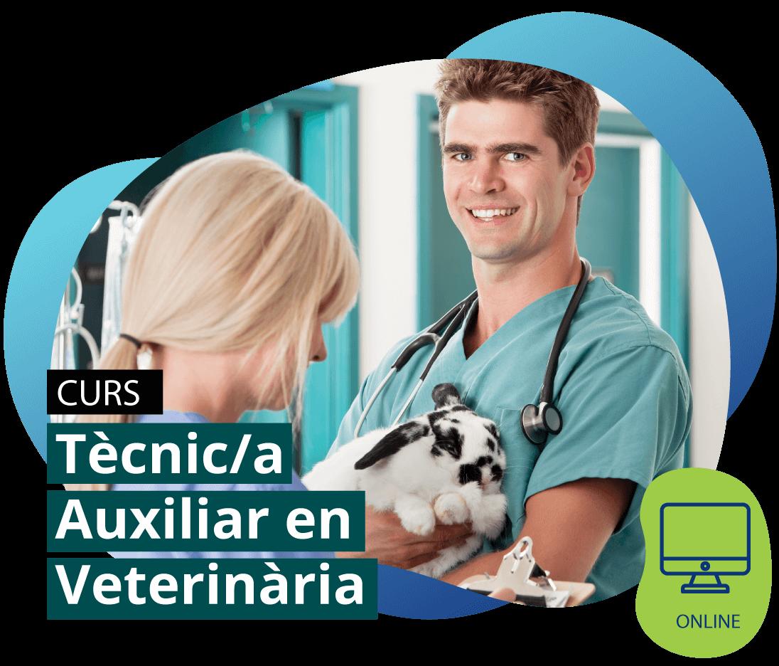 Curs Tècnic/a Auxiliar en Veterinària ONLINE