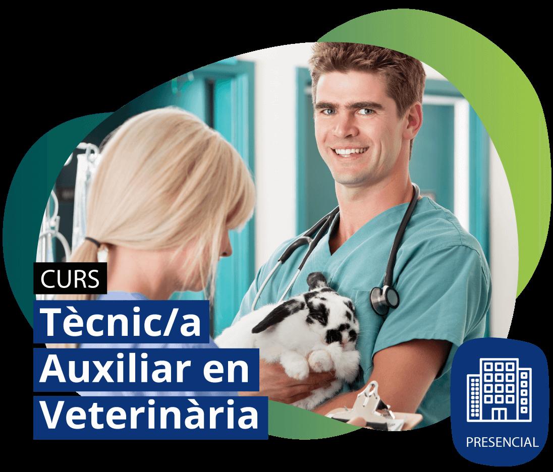Curs Tècnic/a Auxiliar en Veterinària PRESENCIAL