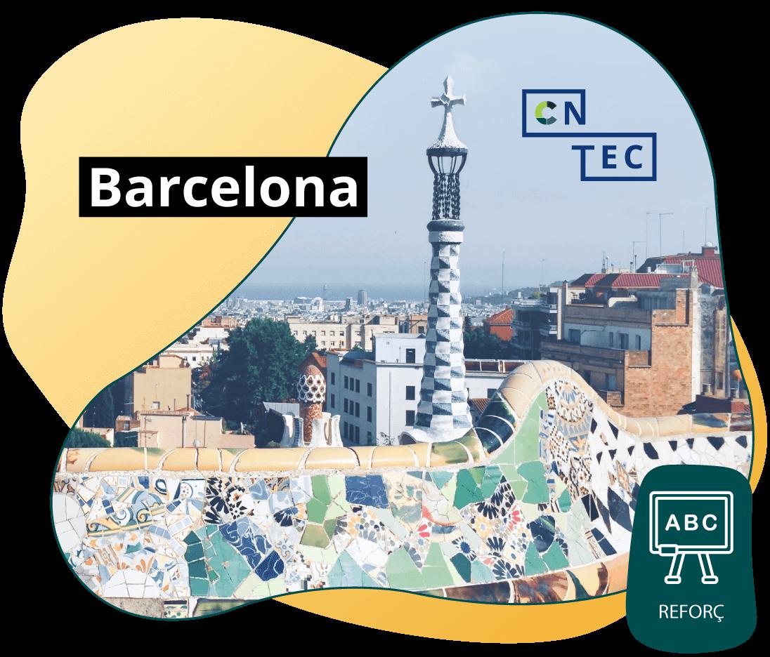 Online amb reforç Barcelona