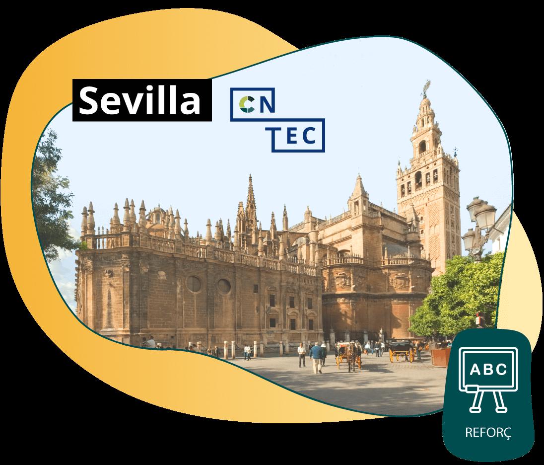 Online amb reforç Sevilla
